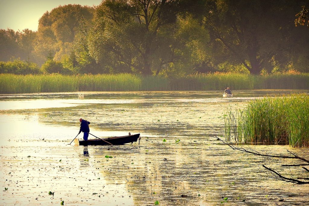 Fishing in the Danube Delta