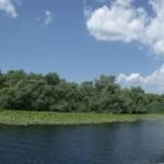 canal delta dunarii